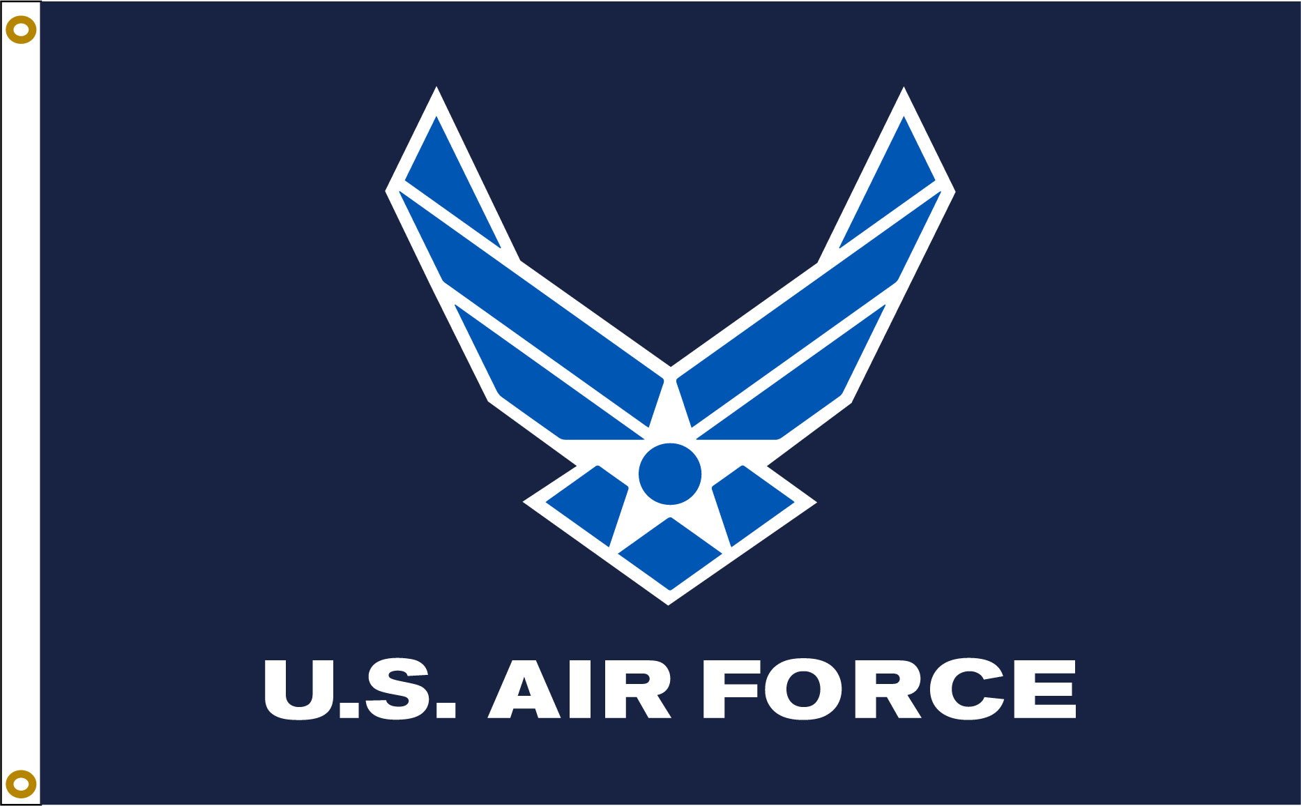 Air Force Wings 1