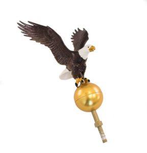 Natural Eagle