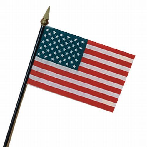 US Flag - Mounted