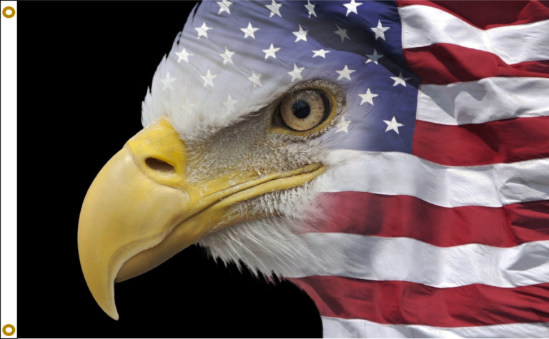 US Flag Eagle