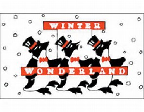 Winterland Penguins (Clearance) - Nylon 3'x5'